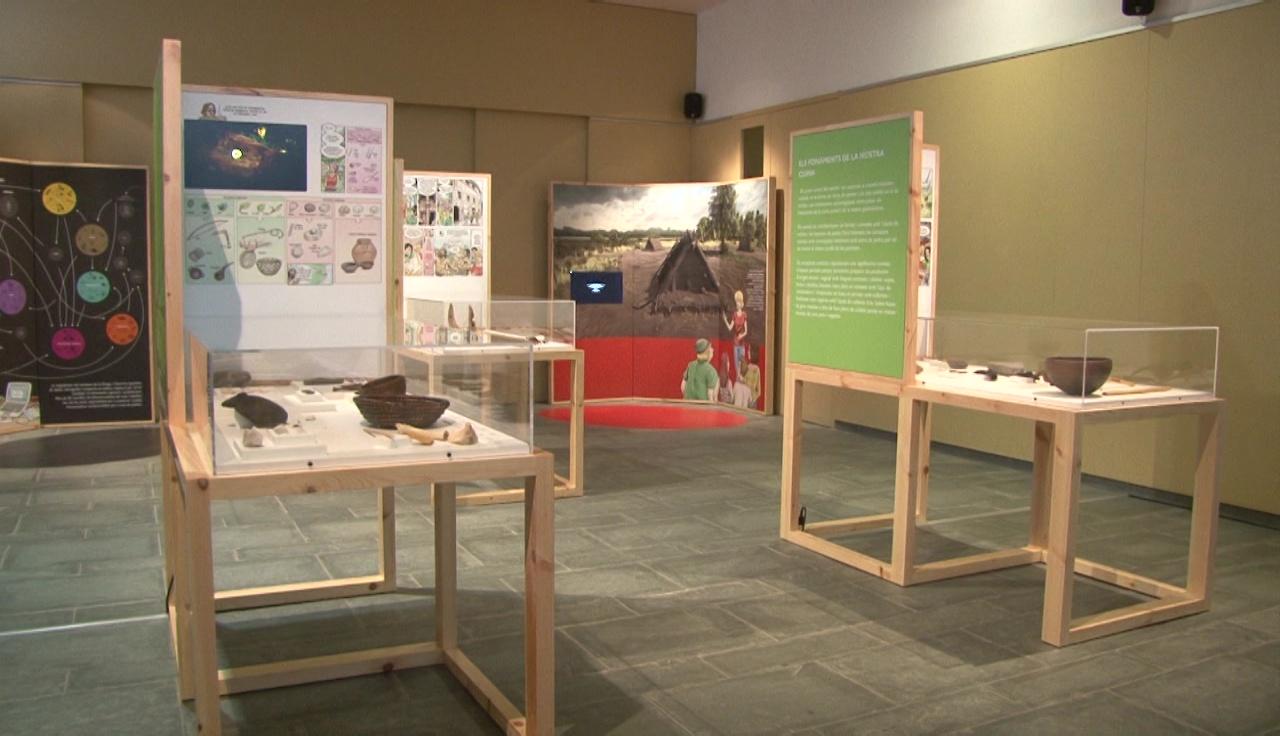 150 peces originals i un discurs en forma de còmic formen l'exposició sobre el parc neolític de la Draga que es pot visitar al Museu Darder